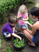 Children explore the garden during Homeschool Tuesdays at CLP - Main.