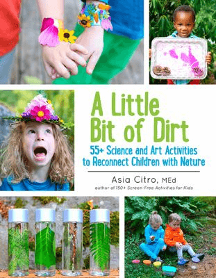 Cover of the book, A Little Bit of Dirt