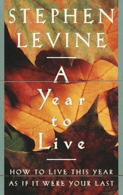 Cover of A Year to Live
