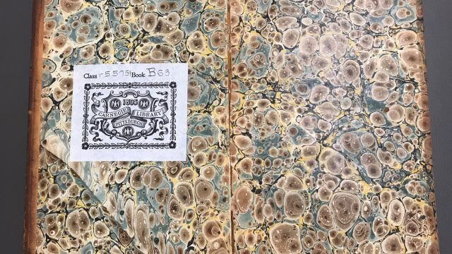 Example of a shell patternend sheet with watery blue, earthy brown, and pale yellow made from historic bookbinding practices.