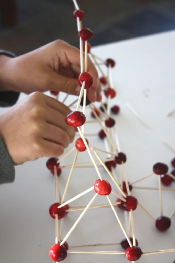 Building a bridge with toothpicks and cranberries