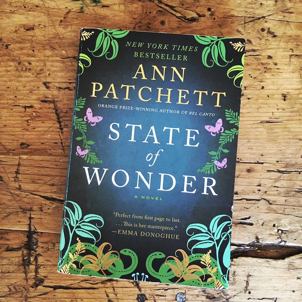 Cover art of State of Wonder by Ann Patchett