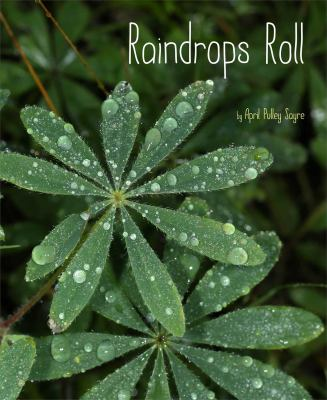 Cover of the book, Raindrops Roll by April Pulley Sayre