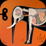 Icon for the app, Mammals.
