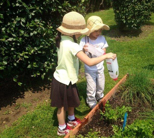Children water the Library garden.