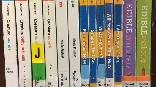 Picture of books on a bookshelf with the spines out