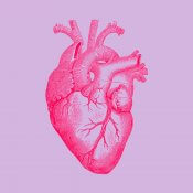 Logo of the show, a red anatomical heart on a lavender background