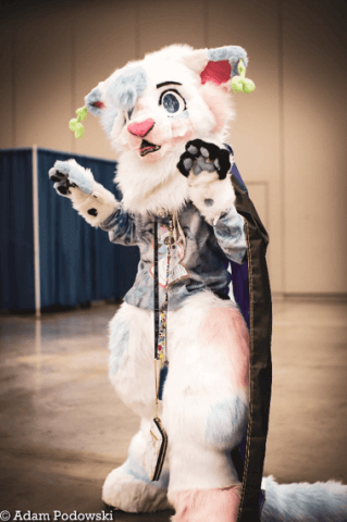 A photograph of a person wearing the submitter's costume. The costume is a white lion wearing a purple cape and a blue shirt