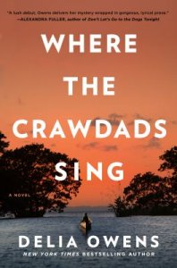 """Text reads """"Where the Crawdads Sing"""" by Delia Owens and is against an orange-pink sunset with silhouetted trees."""