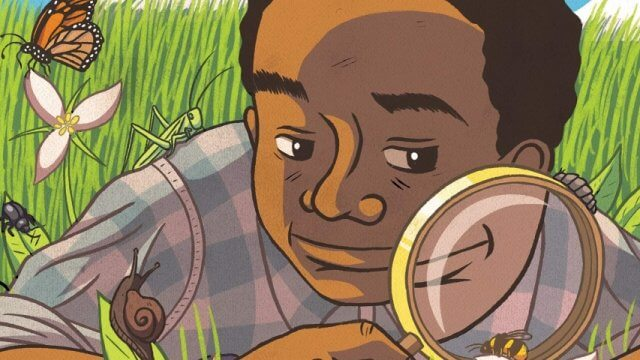 book cover art showing a young boy in the grass looking at insects with a magnifying glass